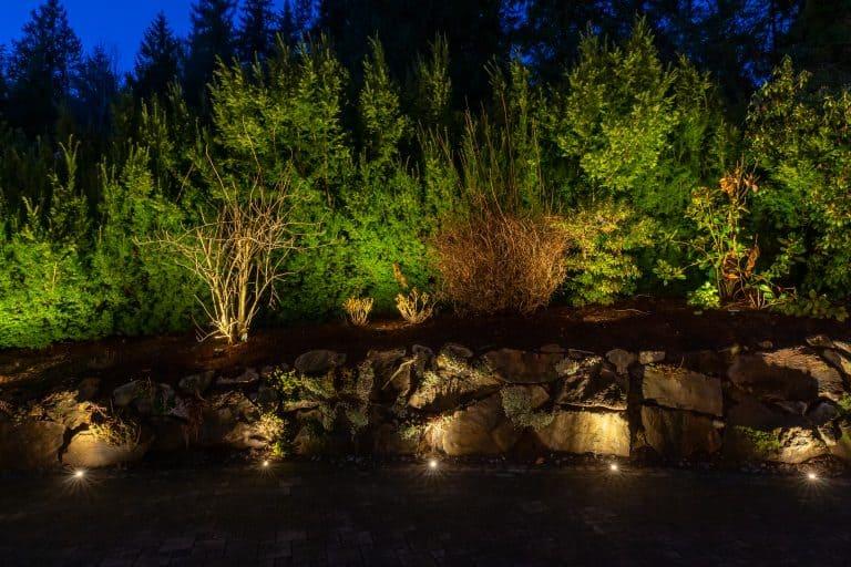 light rocks